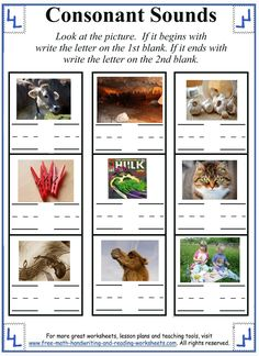 Printable Letter C - Worksheets & Activities
