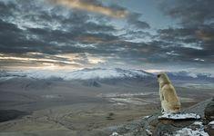 Cordilheira do Himalaia - A maior cadeia montanhosa do mundo está localizada entre a planície indo-gangética, ao sul, e o planalto tibetano, ao norte, atingindo a Índia, China, Butão, Nepal e Paquistão.