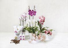 Det selges egen jord og gjødsel spesielt egnet for stell av orkidéer.