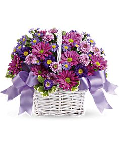 Order Daisy Daydreams from North Suburban Flower Company, your local Niles florist. For fresh and fast flower delivery throughout Niles, IL area. Get Well Flowers, Flowers Today, All Flowers, Summer Flowers, Fresh Flowers, Butterfly Flowers, Happy Birthday Bouquet, Birthday Flower Delivery, White Chrysanthemum