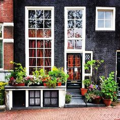 Greetings from De Jordaan, Amsterdam. Amsterdam Houses, I Amsterdam, Amsterdam Travel, Amsterdam Netherlands, Leiden, Dutch Golden Age, Nature Images, Windmill, Cool Pictures