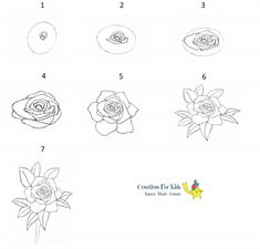 Realistic Rose, Realistic Drawings, Peony Drawing, Draw Flowers, Solid Shapes, Step By Step Drawing, Flower Frame, Drawing Ideas, Crafts