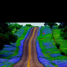 Texas Hill Country...