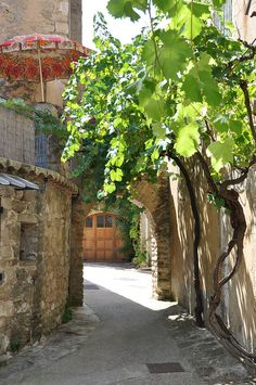 """Venasque. One of the official """"Most beautiful villages in France."""""""