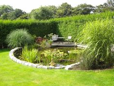 pond - structured outside