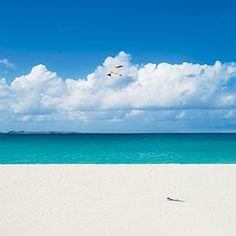 Our Favorite Caribbean Destinations   Anguilla: The Most Romantic Escape   CoastalLiving.com