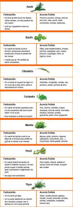 Intensément aromatiques, les herbes fraîches sont idéales pour parfumer et sublimer la saveur d'une foule de plats. Découvrez leurs secrets afin de les intégrer au mieux à vos menus!