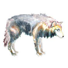 wolf painting  wolf art  fairytale  original by MandyBesek on Etsy, $130,00