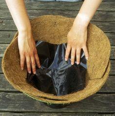 Water Wise Hanging Basket