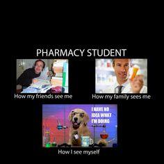 Pharmacy School!