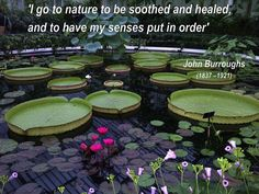 John Burroughs & Nature