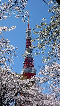 Sakura Tower, Japan