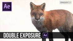 After Effects Tutorial: Double Exposure Animation