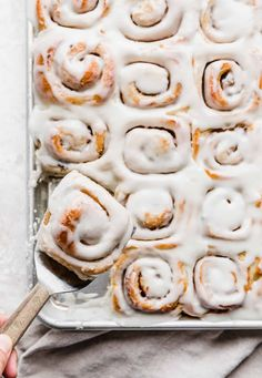 Mini Cinnamon Rolls — Salt & Baker Homemade German Chocolate Cake, Double Chocolate Chip Cookies, Chocolate Protein Powder, Cinnamon Popcorn, Cinnamon Chips, Cinnamon Spice, Coconut Pecan Frosting, Canned Frosting, Frosting Recipes