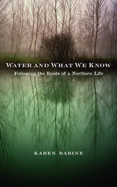 """Check out Part Two of my interview with writer Karen Babine, author of """"Water and What We Know: Following the Roots of a Northern Life."""" Part Two is titled """"The Triangular Prism, Water and What We Know, & Galway.""""  #jactionary #newblogpost #interview #karenbabine #water #minnesota #author #authorinterview #lifestyle #inspiration #writing #advice #reading #books #galway #ireland #nebraska #unl  http://www.jactionary.com/2015/07/interview-karen-babine-part-two.html"""