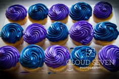 Wedding, Wedding Photography, Wedding Photos, Cupcakes, Blue and Purple Wedding