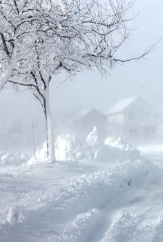 Blizzard Cold--Just experienced a storm like  this --this week in Alberta Canada (Dec 2014)