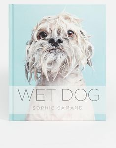 Shop Wet Dogs Book at ASOS. Christmas Gifts 2016, Dog Books, Christmas Animals, Pretty Cool, Dog Cat, Cute Animals, Lion Sculpture, Diy, Statue
