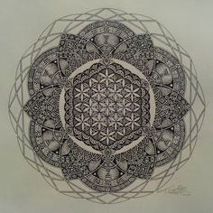 taco sacred geometry - Google Search
