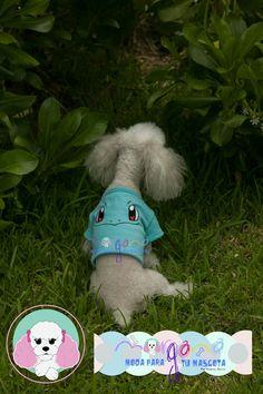 Mascota: Azzurra  Talla: 2  Estampado y color: Squirtle (acqua).  Fotografía: Tatiana Rodriguez Diseño: América García