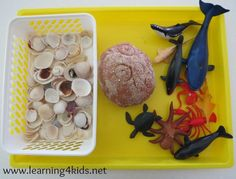 Invitation to play with Sandy Beach Play Dough, shells and sea creatures (learning4kids)