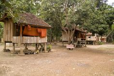 Houses sit on wooden stilts to protect them from flooding in a Peace Corps Volunteer's community in rural Cambodia.