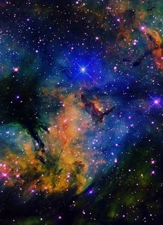 IC 1318 Gamma Cyg Nebula consists of the blue area surrounding Gamma Cygni th Cosmos, All Nature, Science And Nature, You Are My Moon, Across The Universe, Space And Astronomy, Amazing Spaces, To Infinity And Beyond, Deep Space