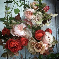 @mag.gieshep.herd  Romantic roses captured by Nicolette Camille Florist @nicamille, Shelter Island NY. #roses #wild #spray #stilllife #pretty #florist #flora #floral #beauty #pretty #delicate #petals #nature #natural #botany #botanical #eco #ecology #garden #perfume #scented #light #petals #romantic #love #wedding #study