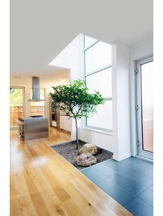 contemporary entry by LineBox Studio  mbedded a potted Brazilian olive tree into the ground and surrounded the surface with stones, creating a small interior garden.  depressed during the winter months and  wished she could be around nature — but the cold makes staying outdoors difficult. So we added the tree and created a Zen garden to make winters more bearable