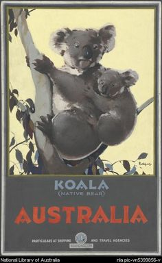 James Northfield, Koala (native bear) Australia ca. Australia Pictures, Vintage Travel Posters, Travel Agency, Illustrators, Nativity, Bear, Artist, Prints, Books