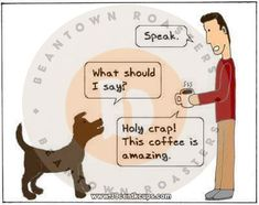 Do you speak to your furry baby? At www.beantownroasters.com we definitely do. As a small family owned and operated business, our furry babies are our family, and our customers our community. That is why we are always striving to offer the best yummy K-Cup coffee experience possible.  www.39centkcups.com #beantownresident Roasters Coffee, K Cups, Heavenly, Beverages, Community, Babies, Friends, Memes, Business