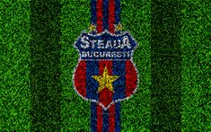 Blue Red Lines, Bucharest Romania, Sports Wallpapers, Desktop Pictures, Lawn, Grass, Football, Club, Texture