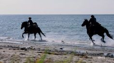 Claire and Murtagh