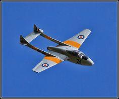 De Havilland Vampire T.11  #plane #1950s