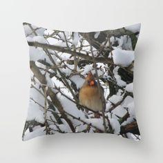 Snowy Cardinal - $20
