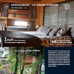 ARBRAKABANE: Arbrakabane et le nouveau TIGUAN.