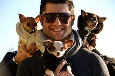 How sexy!  A man that loves chihuahuas!  Where can I get me one of these!? ACTUALLY I HAVE ONE!!!