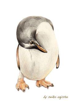 ペンギン Creatures, Animals, Animales, Animaux, Animais, Animal