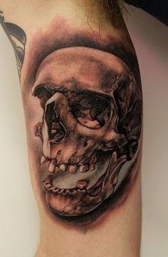 _727.Thomas-Kynst-Tattoo.Teschio-sdentato