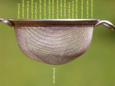 Del caos al orden: encontrar, filtrar y coleccionar contenido educativo « EaD y TIC