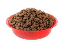 The Pedigree Dog Food Controversy: What Are Your Options?