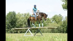 Someday the trust will be there Extreme Trail, Trail Riding Horses, Horse Trails, Equestrian Stables, Horse Arena, Trick Riding, Horse Pictures, Cowgirl Pictures, Horse Photos