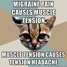 Migraine pain causes muscle tension; muscle tension causes tension headache