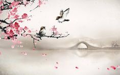 Sparrows on the cherry tree wallpaper - Ink ideas - Obstgarten Tree Hd Wallpaper, Bridge Wallpaper, Artistic Wallpaper, Bedroom Wallpaper Cherry Blossom, Cherry Blossom Images, Cherry Blossom Painting, Sakura Cherry Blossom, Cherry Blossoms, Japanese Painting