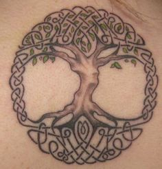 1000 images about tree of life on pinterest tree of life celtic tree of life and cartoon cartoon. Black Bedroom Furniture Sets. Home Design Ideas