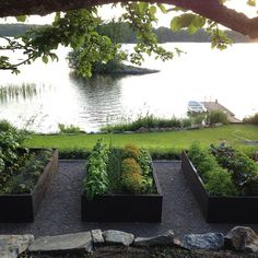 Victoria Skoglunds kitchen garden.