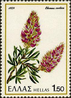 """Sello: Cretan Ebony """"Ebenus cretica"""" (Grecia) (Flora and Fauna) Mi:GR 1320"""