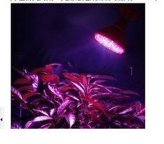 Q2ag LED Plant Growth Lamp 7w E27 85-265v - Red(620-660nm)+ Blue(430-460nm) Ultraviolet Plant Grow Light qlee http://www.amazon.com/dp/B00AAW0KIK/ref=cm_sw_r_pi_dp_4.x.vb1JC76YN