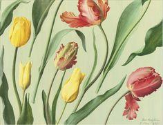 robert-hadley:  Eliot Hodgkin: Tulips, 1957. Tempora on card
