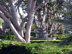 Walking Tours | Architectural Foundation of Santa Barbara